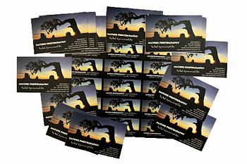 Visitenkarten von logiprint