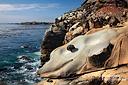 Smiling Dolphin - Delfine tummeln sich beim Salt Point S.P. nicht nur im Wasser! ;-)