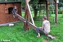 Für die Jugend gab es zum Glück auch einen Spielplatz gleich hinter dem Haus.