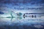 Schön bläuliche Eisberge treiben auf der Jokulsarlon Lagune im Südosten Islands - sie sind aber nicht der Grund für einen Besuch im Winter, denn das tun sie dort das ganze Jahr über.