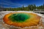 Das Morning Glory Pool ist eine der bekanntesten Quellen in der Upper Geyser Basin des Yellowstone Nationalparks. Seine Farbe hat sich im Lauf der letzten Jahrzehnte stark verändert, früher erschien es deutlich türkiser, heute ist es eher grünlich in der Mitte.