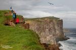 Wo sind sie nur die vielen Vögel?, fragten nicht nur wir uns in Latrabjarg, Islands berühmtesten Vogelklippen.