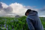 An Lichtstimmungen und Wolkendrama mangelt es in Island nie - hier bei den Lupinenfeldern auf Snaefellsnes.