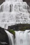 Aber zum Glück stürzte das Wasser auch mal in schönerer Form von oben herab… wie z.B. hier beim Dynjandi Wasserfall! ;-)