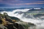 Nebel oberhalb der Elbe in der Sächsischen Schweiz