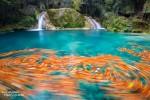 Wo bildet das Herbstlaub solche Wirbel im türkisblauen Wasser?