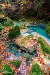 Viele kleine grüne Inselchen schmücken den Flusslauf des Urederra. Ein Rotkelchen saß hier keine 40 cm von Isa entfernt, zu blöd dass sie da ausgerechnet den Weitwinkel drauf hatte... ;-)