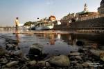 Niedrigwasser an der Elbe - die Raddampfer der Sächsischen Dampfschifffahrt liegen (fast?) auf Grund