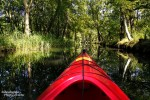Und plötzlich hatten es sogar alle eilig beim Paddeln. Jder wollte der Erste sein, denn die Lichtbedingungen waren herrlich und die Fließe im Spreewald teilweise spiegelglatt.
