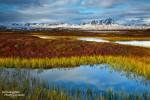 Mit leuchtenden Farben lockt im Herbst vor allem die Gegend rund um den Lake Myvatn.