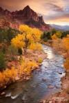 Der Blick auf den Watchman ist einer der begehrtesten Fotografen-Hotspots im Zion Nationalpark; hier der herrliche Sonnenuntergang am 6.11.2010.