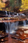 Die Angelarch Falls im Zion Nationalpark zeigen sich im Herbst von ihrer schönsten Seite.