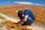 So manch entlegene Jeep-Piste im Südwesten der USA muss man nicht mal verlassen um Wildblumen zu fotografieren. Und mit Klappmonitor geht's auch ohne Liegen auf dem Boden, da reicht eine seltsame Verbeugung... ;-)