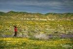 Zwei Tage lang wanderten wir durch die tollen Ebenen des Carrizo Plain NM. Und Steffen auch am zweiten Tag extra wieder mit den Foto-T-Shirt. :-)