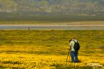Es sprangen aber noch ein paar mehr Wildflower-Fotografen dort herum, kein Wunder so prächtig wie es hier in der Carrizo Plain aussah.