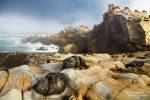 Die tollen Sandsteinformationen im Salt Point State Park an der kalifornischen Küste früh morgens umhüllt von Nebel.