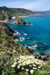 Wunderschön ist es im Frühling bei den Acantilados (Steilküsten) de Loiba in Galicien.