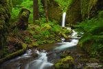 Ein versteckter idyllischer Wasserfall unweit des Eagle Creek in der Columbia River Gorge. Wahrscheinlich ist auch die Natur in seiner Umgebung inzwischen unwiderruflich zerstört... ;-(