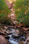 So darf man sich den Trail jenseits der Jeep-Piste und entlang des Kanarra Creek vorstellen.