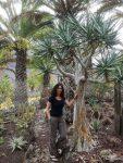 Der Spaziergang durch den Kaktuspark Cactualdea war auch recht kurzweilig. Mit weit mehr als nur Kakteen und den üblichen Tourifotos... ;-)