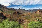 Blick vom Mirador El Guriete entlang der GC-65 hinauf nach Santa Lucia im Südosten von Gran Canaria mit Baby-Drachenbäumen im Vordergrund