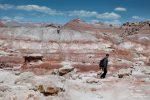 Im Burpee Dinosaur Quarry gibt es außer einer Erläuterungstafel am Parkplatz zu den Funden nicht sonderlich viel zu sehen. Aber wenn man schon dort ist, spaziert man dann doch ein wenig zwischen den fossilienreichen Lehmhügeln umher.