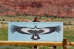 Aber immerhin gibt es an der Condor Viewing Site eine interessante Tafel, die die Flügelspannweite des Kondors veranschaulicht.