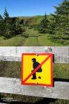 Eines der vielen neuen Verbotsschilder in Island...