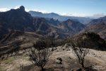 Exakt derselbe Ort ein Jahr später - all die grünen Büsche und Drachenbäume sind dem Brand zum Opfer gefallen.