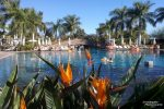 Das Lopesan Resort verfügte über sieben unterschiedlich große, voneinander getrennte Poolanlagen, jede davon anders gestaltet.