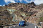 Sie wachsen in tieferen Lagen im Osten und Süden Gran Canarias, auch bei den Los Azulejos (span. für Fliesen)