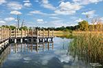 Die Guttauer Teiche sind ein besonders schönes Gebiet inmitten des UNESCO Biosphärenreservats Oberlausitzer Heide- und Teichlandschaft