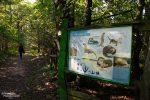 Schilder entlang des Naturlehrpfads erläutern, was es im Biosphärenreservat Oberlausitz so alles zu sehen gibt.