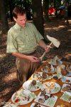 Geboten wid dort u.a. eine große Pilzausstellung.