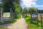 Beim Besucherzentrum in Wartha startet der Naturlehrpfad durch das Gebiet der Guttauer Teiche, bis zum Aussichtsturm am Großteich ist er rollstuhltauglich.
