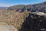 Hier sieht man wie der Borkenkäfer um die Felsen bei der Idagrotte fast alles vernichtet hat - Foto von letzter Woche.