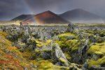 Hinzu kam, dass nur wenige Kilometer von unserem Quartier entfernt einer der schönsten kleinen Schätze Islands lag: das Berserkjahraun!