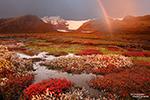 Und für das Herbstlaub auf den ehemaligen Geröllflächen des Svinafellsjökull kam die Windstille ebenfalls wie gerufen. Regenbögen gab es zwischendurch auch noch immer, wenn alles passte sogar zum Sonnenuntergang.