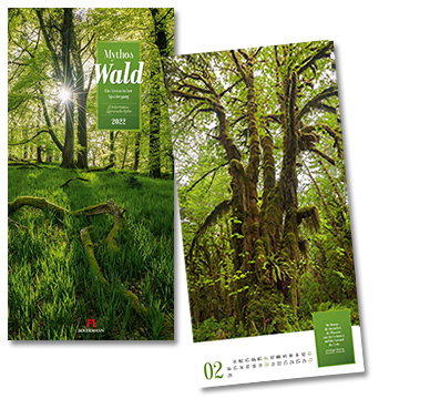 Mythos Wald - Literatur-Kalender von Ackermann 2022